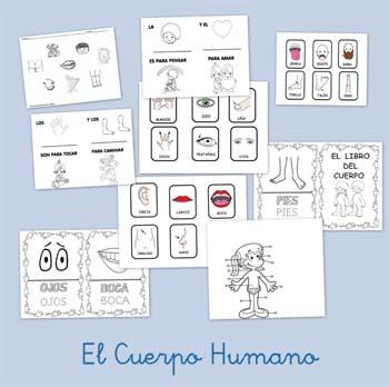 El Cuerpo humano en Primaria: ¡35 recursos por descubrir!