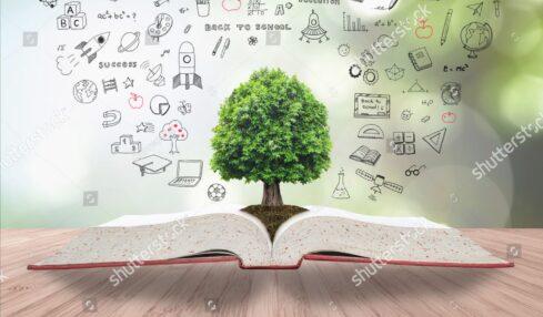 vídeos didácticas conocimiento del medio