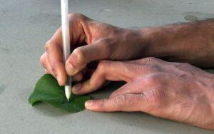 Un bolígrafo para pintar sensores