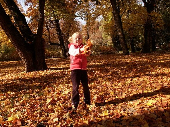 ¡Ya estamos en otoño! Actividades creativas para el aula de infantil 3