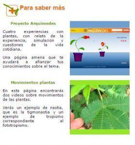 5 recursos para aprender Botánica en Secundaria 4
