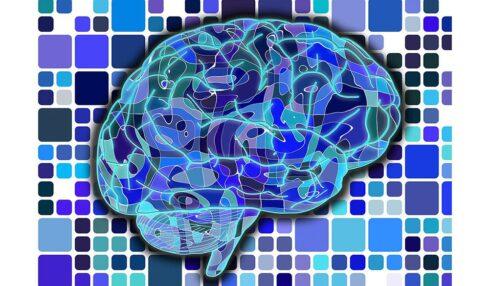 10 apps para entrenar tu cerebro mientras juegas 5
