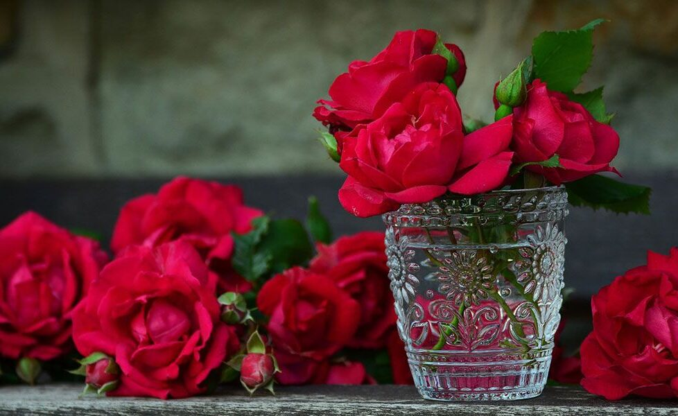 """5 actividades sobre naturaleza para realizar durante """"el mes de las flores"""" 2"""