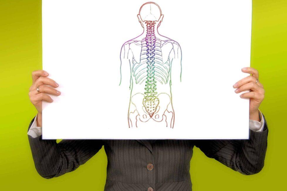 15 apps para aprender y entender el cuerpo humano 1