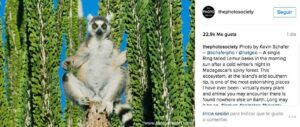 10 cuentas de Instagram educativas que deberías seguir 12