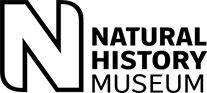 15 museos con visitas virtuales para descubrir sin salir de clase 10