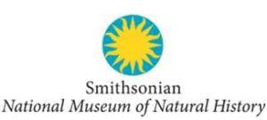 15 museos con visitas virtuales para descubrir sin salir de clase 7