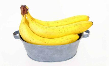 El Proyecto Scratch de los Viernes (XXI): el lanza-bananas 5