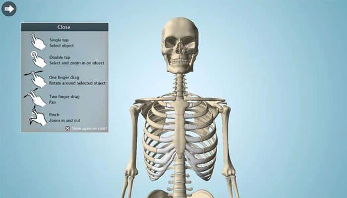 el cuerpo humano mejores apps