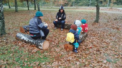 plisti plasta escuela bosque