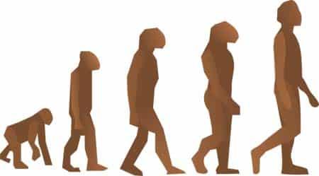 Evolucion_destacada