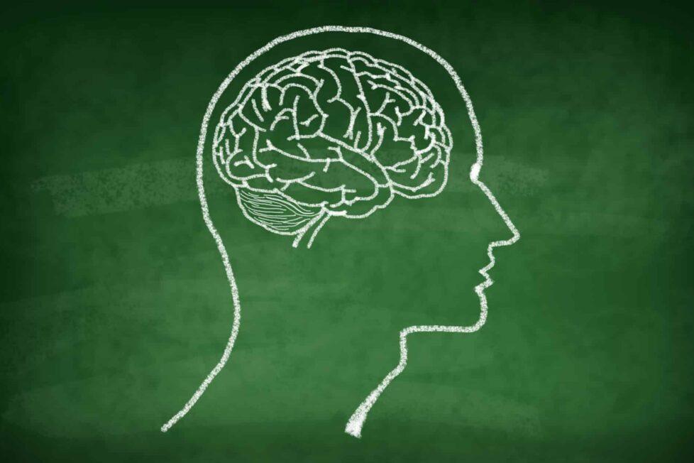 Así puedes potenciar la capacidad cerebral de tus alumnos e hijos 1