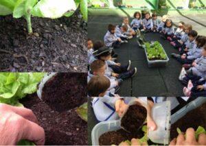 Infantil: 35 buenas prácticas educativas con TIC 34