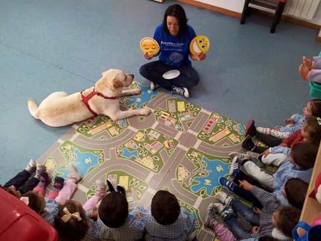 educacion emocional asistida perros 2