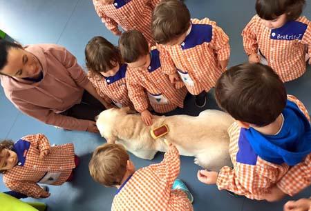 educacion emocional asistida perros 3