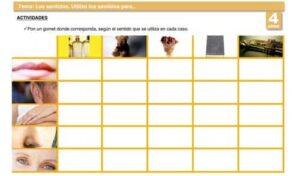 20 recursos para trabajar los cinco sentidos en Educación Infantil 19