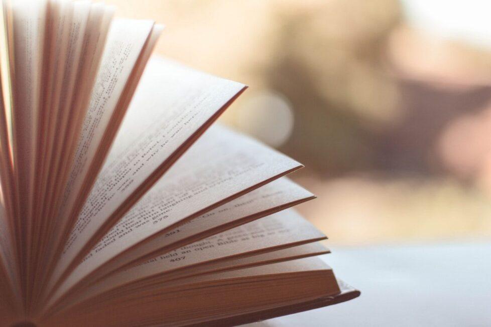 libros recomendados por docentes