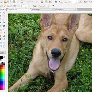 Los 15 mejores programas gratis para editar imágenes 14