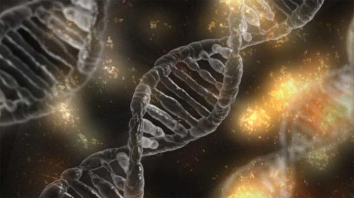 Recursos para Biología en Secundaria y Bachillerato 19