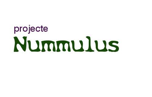 Logotipo proyecto nummulus