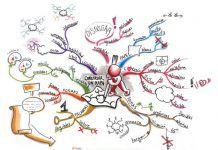 mapas mentales main