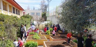 The-school-garden-greece-osos