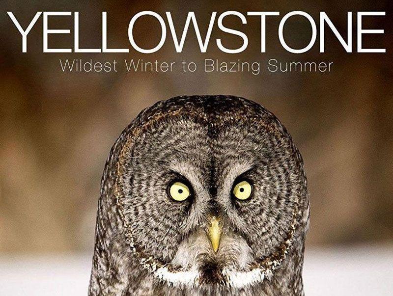Yellowstone: El gran deshielo americano
