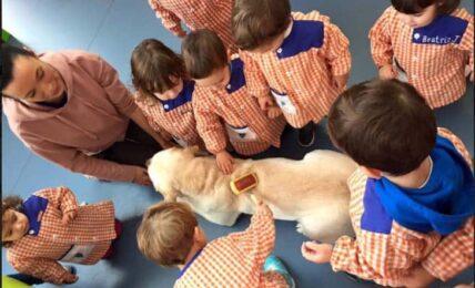 Infantil: 35 buenas prácticas educativas con TIC 44
