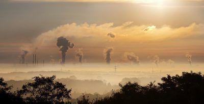 educación ambiental asignatura