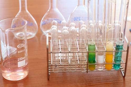 Campus Científico de Veran': ¡una experiencia para vivir la ciencia!