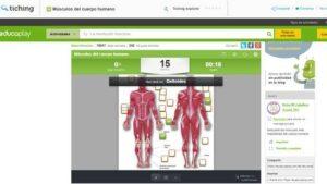 cuerpo humano músculos