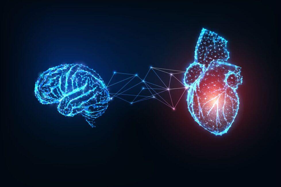 Charlas TED sobre Inteligencia Emocional