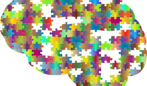 Libros sobre inteligencias múltiples