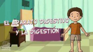 EL APARATO DIGESTIVO Y LA DIGESTIÓN
