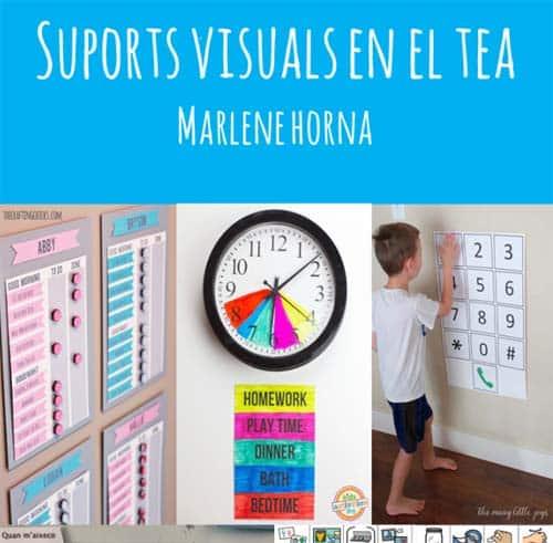 Soporte visual en el TEA