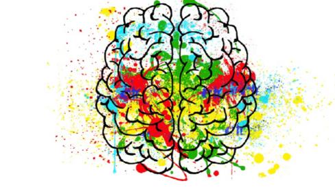 neuroeducación en las aulas