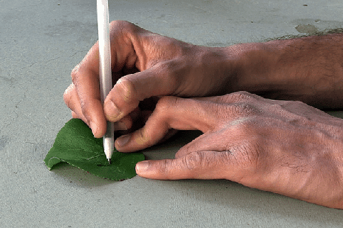 Bolígrafo que pinta sensores