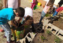 cuidar huerto escuela respeto medioambiente