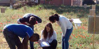 crear un parque agrícola