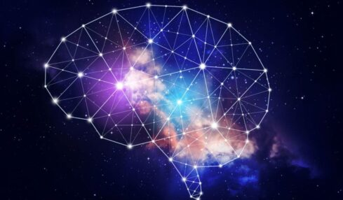 cropped neuroeducacion