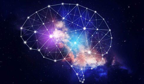 Qué es la neuroeducación