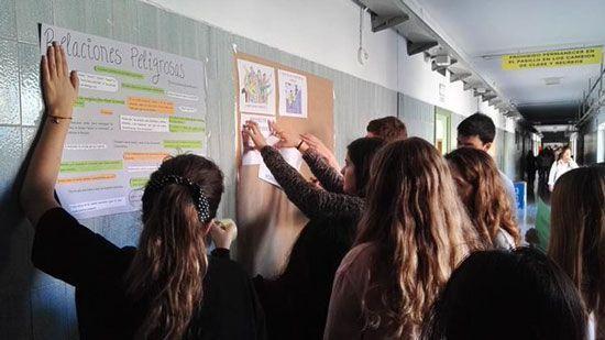 Proyecto para educar en la igualdad y la responsabilidad afectivo-sexual