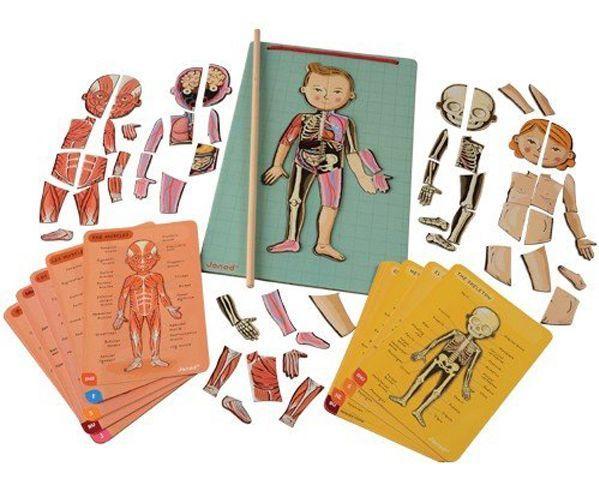 Conocer el cuerpo humano con juegos de mesa