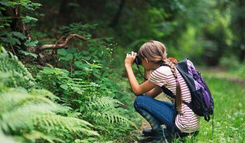 Naturaliza, el programa gratuito de Educación Ambiental para Primaria