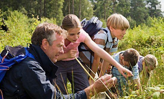 Naturaliza, el programa gratuito de educación medioambiental de ecoembes