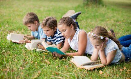 lecturas verano Primaria