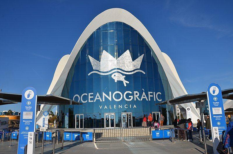 Oceanogràfic Valencia acuarios para visitar en familia