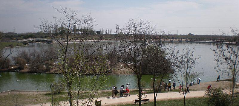 Parque Polvoranca Leganés actividades educación medioambiental