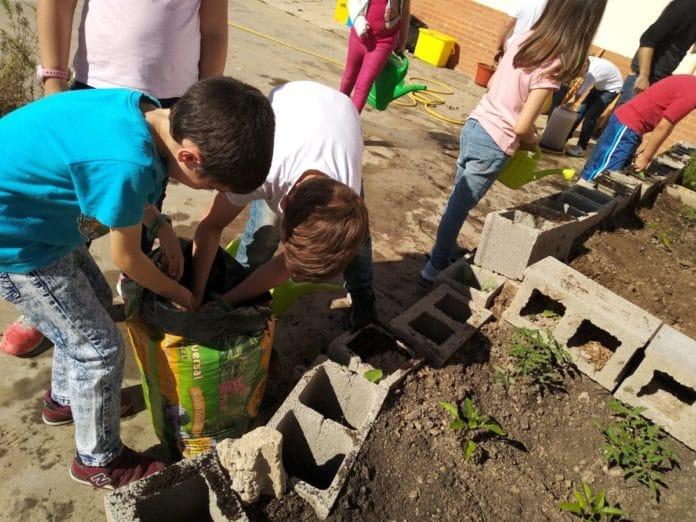 proyectos de medioambiente