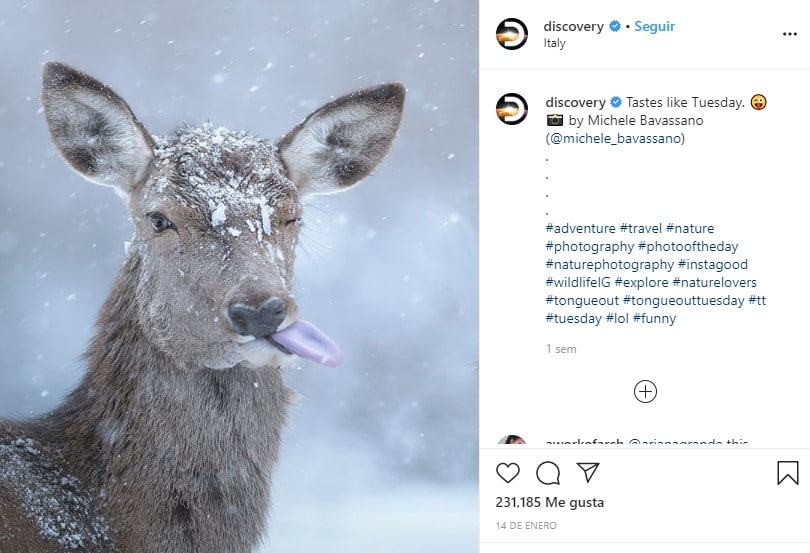 Discovery cuentas de Instagram educativas